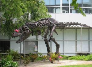 dinosaurio stan